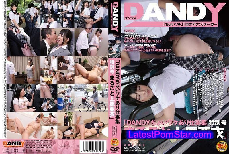 [DANDY-390] 「DANDYちょいワケあり仕事集 特別号 まるごと上原亜衣」