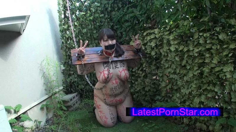 [MSBT-002] 飲精孕ませ メスブタ便女 二人目 板野琴子