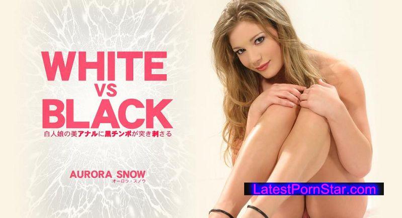 金8天国 Kin8tengoku 1446 白人娘の美アナルに黒チンポが突き刺さる WHITE VS BLACK AURORA SNOW / オーロラ スノウ