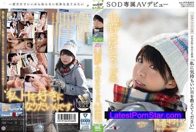 [SDAB-028] 「私に気持ちいいHを教えてください」北野ほたる 19歳 SOD専属AVデビュー