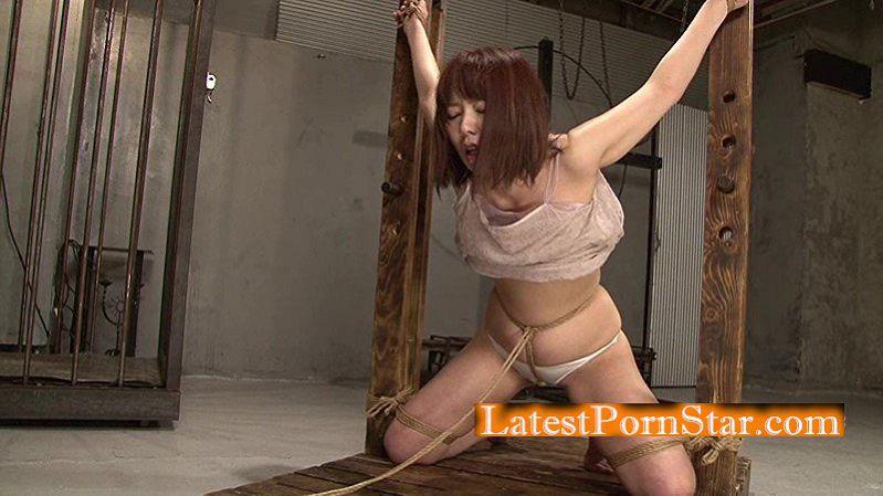 [HD][TAD-009] 極縄 第四章 波多野結衣×奈加あきら
