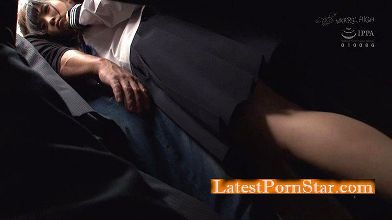 [NHDTB-061] 孕ませバック痴漢 4 膣内の奥まで届く後背位中出しでイキ堕ちる女子校生 エリア拡大版
