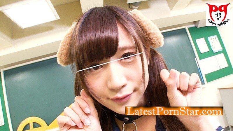 [HD][PKPD-012] 【女子生徒×ぺろぺろワンちゃん】クラスの性ペットとなった女子生徒がカワイイ犬耳と首輪をつけられ誰もいない教室で全身ぺろぺろさせられる!