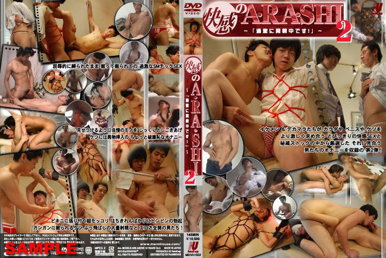 Heat Up – 快感のA・RA・SHI 2 ~「過激に発情中です!」~ (HD) (Pleasure Storm Arashi 2) (HD)