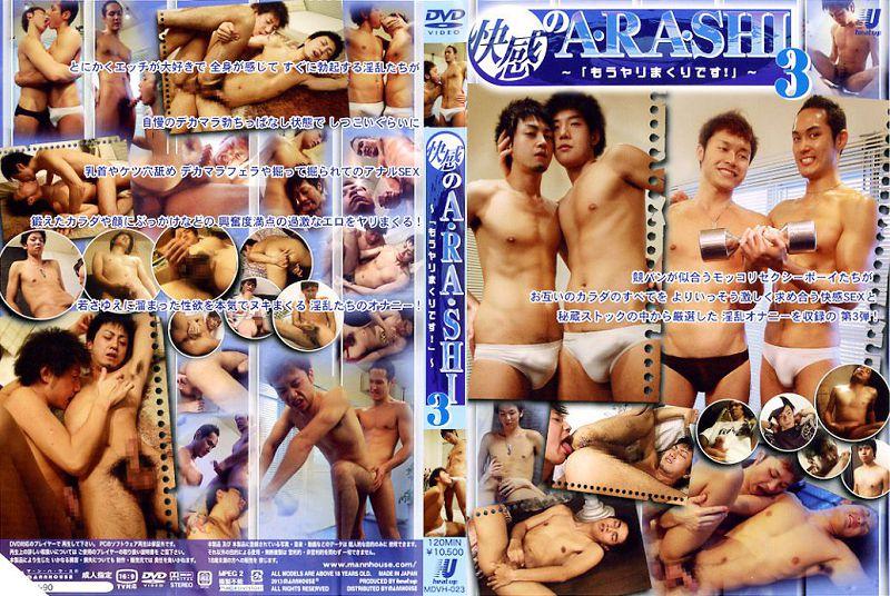 Heat Up – 快感のA・RA・SHI 3 ~「もうやりまくりです!」~ (HD) (Pleasure Storm Arashi 3) (HD)