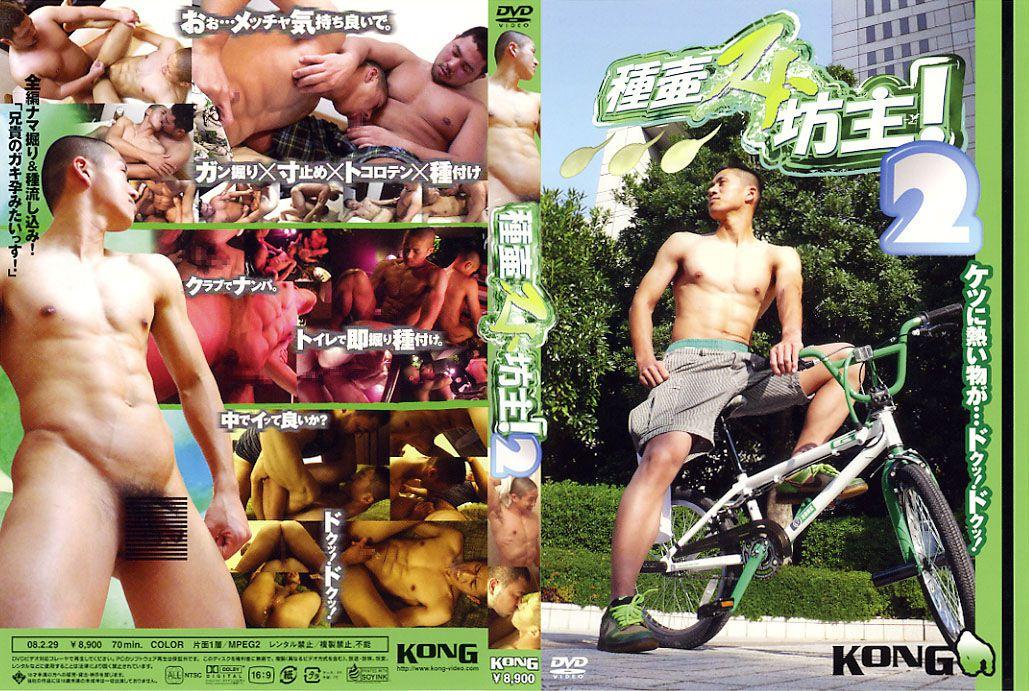 KONG – 種壷スト坊主 2
