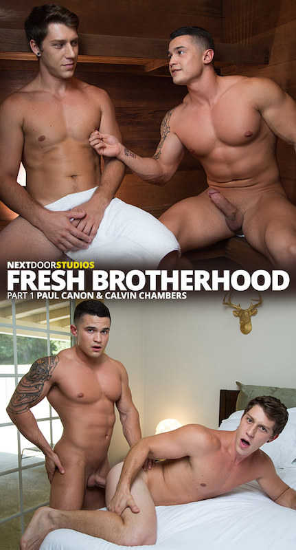 NextDoorStudios – Fresh Brotherhood Part 1: Calvin Chambers Fucks Paul Canon
