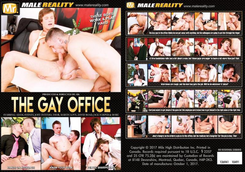 MaleReality – The Gay Office / 2017