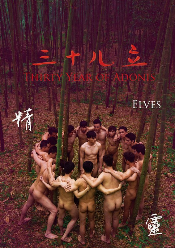 Thirty Years of Adonis – Elves 7