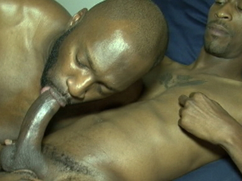 BlackBreedrs – Xxxtra Treats! (bareback)