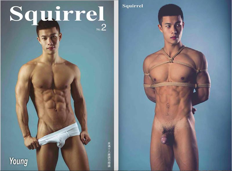Squirrel No.2 – Young