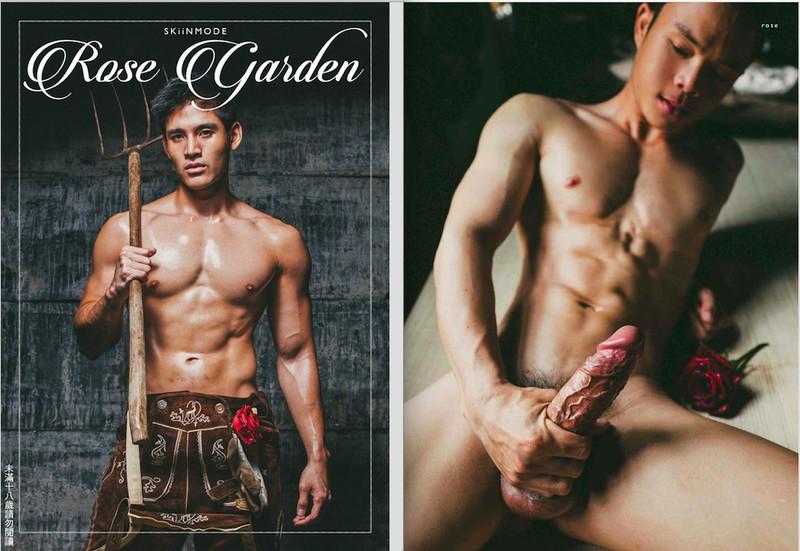 XPERIMENT | Rose Garden