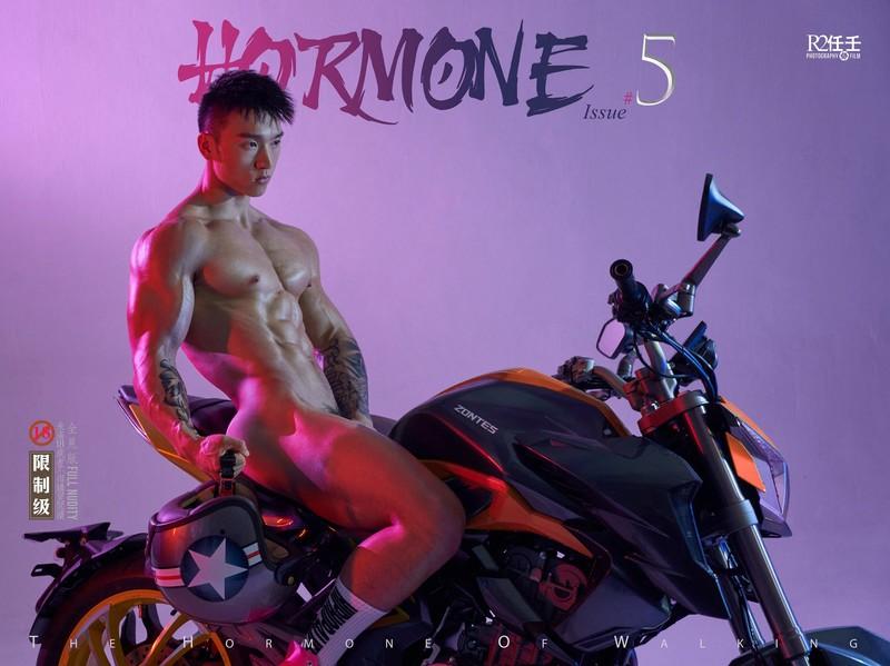 HORMONE 05 – Fat Tiger